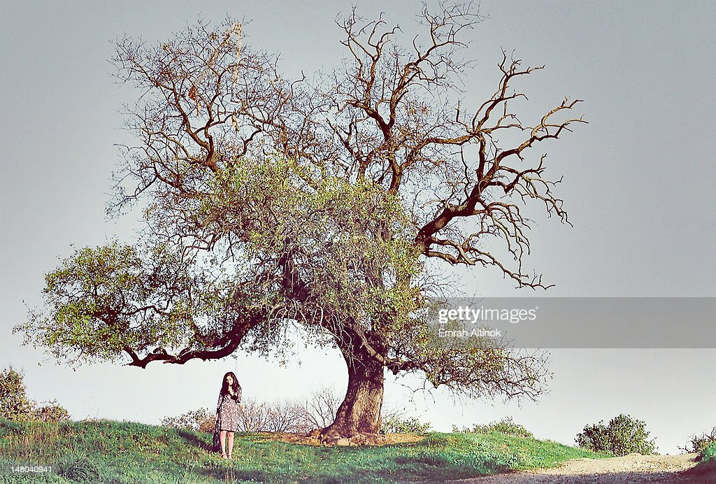 Young woman and lonely tree : Stock Photo