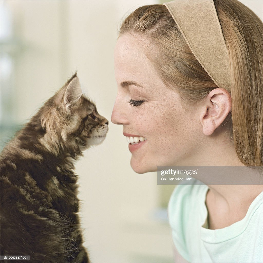 Young woman and Maine Coon Kitten touching noses, close-up : Stock Photo