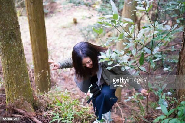 若い女性が森で登山