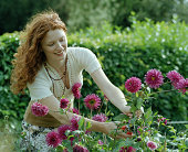 Young woman cutting flowers in garden, smiling