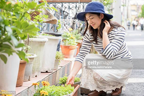 Young Woman Examining Lettuce while Container Gardening in Tokyo, Japan