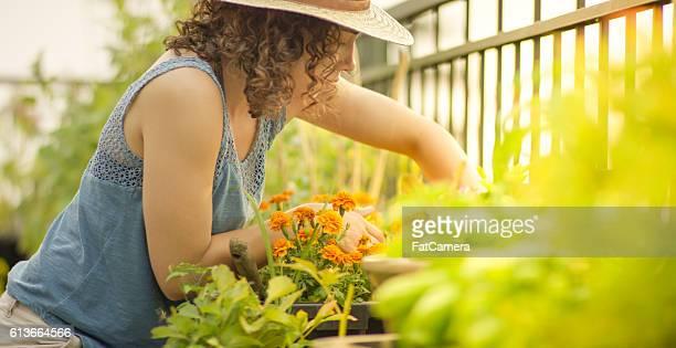 Jeune femme jardinage