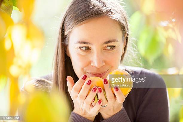 Young Woman Handpicking Persimmon Fruit from the Tree