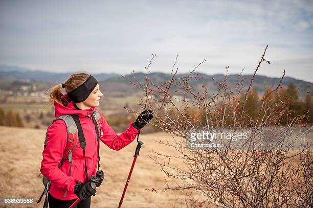Young Woman Hiking on Beautiful Autumn Day