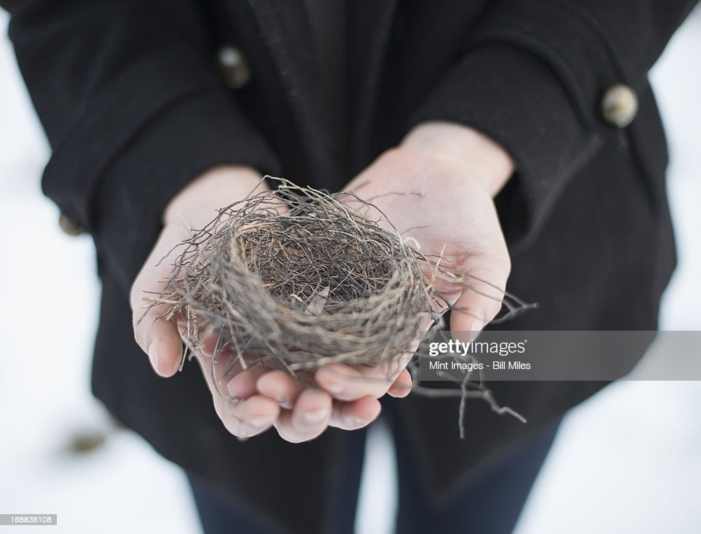 A young woman holding a small empty birds nest in her hands : Stock Photo