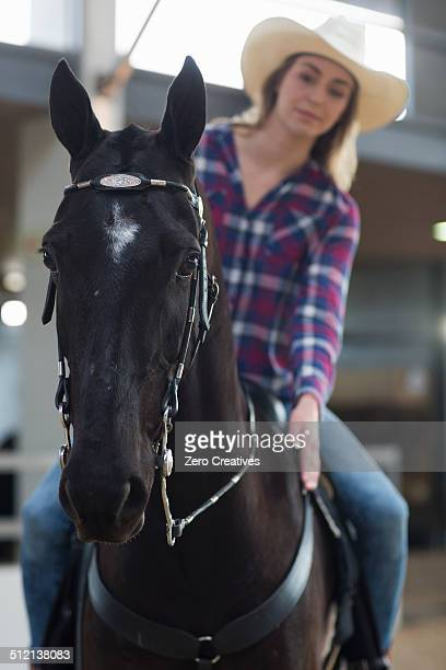 Young woman horseback rider patting horse in indoor paddock