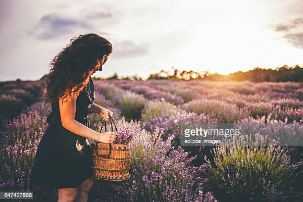 young woman in lavander field