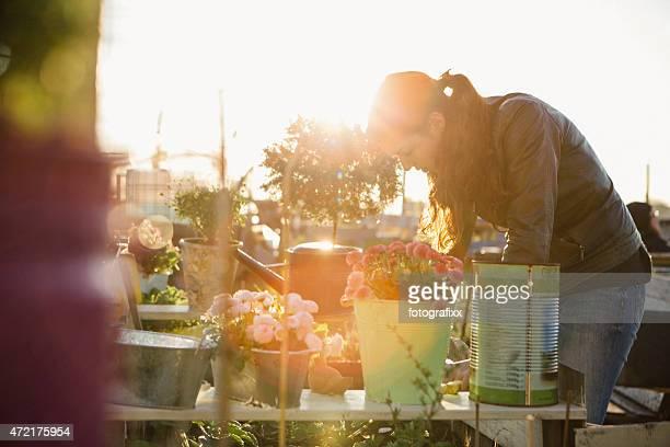Mulher jovem em fundos projecto de jardinagem em relevo