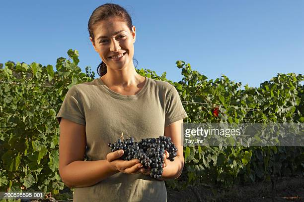 Young woman in vineyard holding bunch of grapes, smiling, portrait