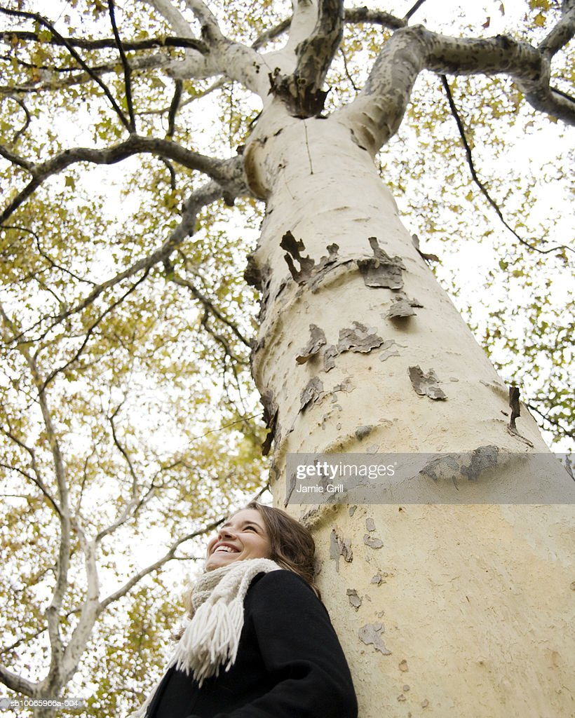 Young woman leaning against tree, looking away, smiling, low angle view : Stock Photo