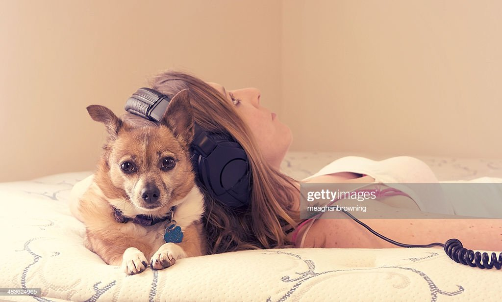 Young woman lying on bed with dog : Stock Photo