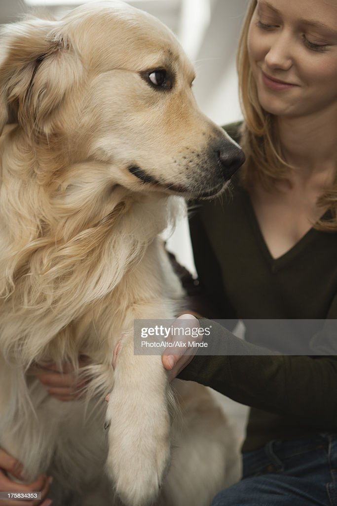 Young woman petting golden retriever : Stock Photo