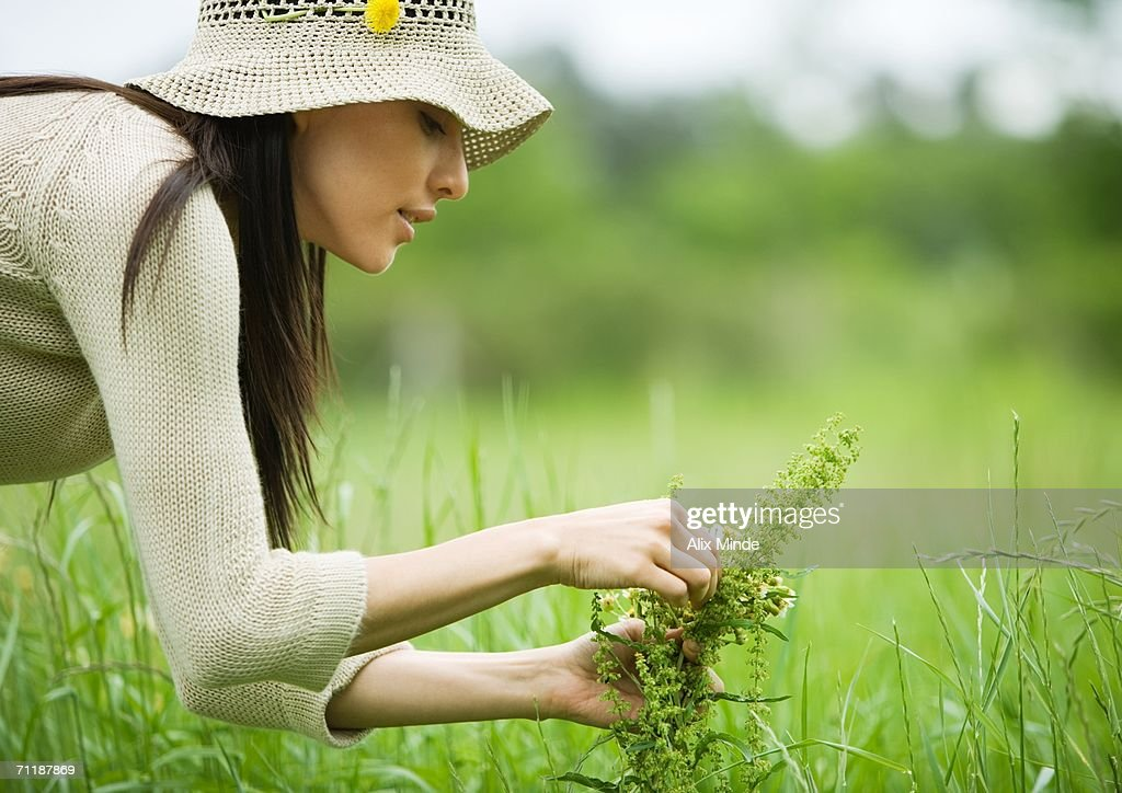 Young woman picking flowers