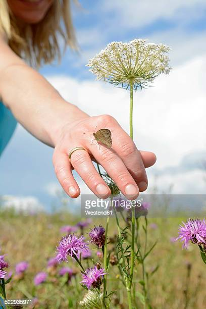 Young woman picking wildflower with butterfly on hand