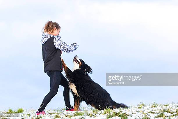 Young woman playing with her Saint Bernard on snow-covered meadow