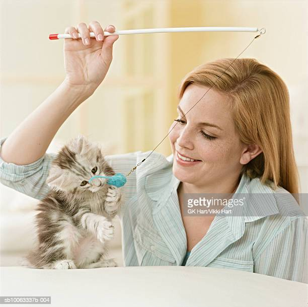 Young woman playing with Maine Coon kitten