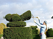 Young woman pruning hedge into shape of bird, side view