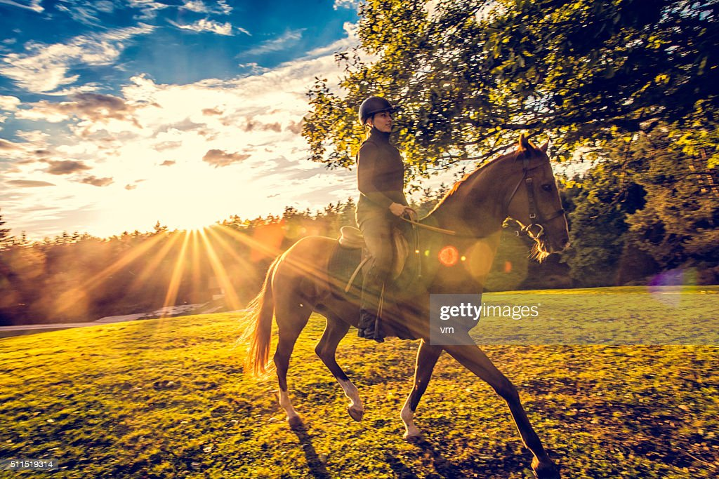 Young woman riding a horse in nature : Stock Photo
