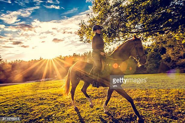 Jovem mulher que monta um cavalo na natureza