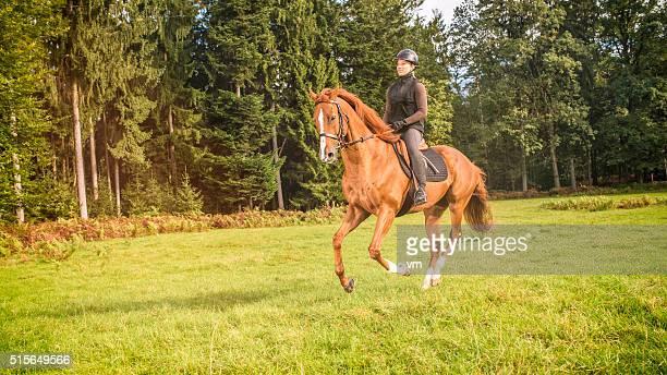 Jeune femme chevauchant un cheval dans la nature