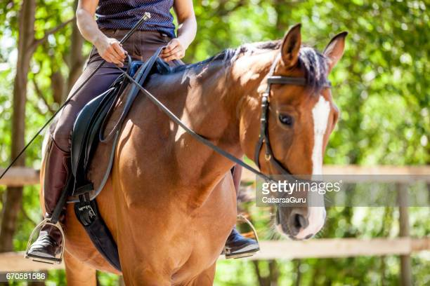 Young Woman Riding Horse in Manege