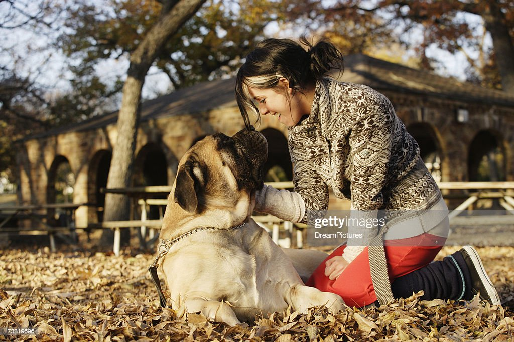 Young woman sitting in park petting mastiff dog : Stock Photo