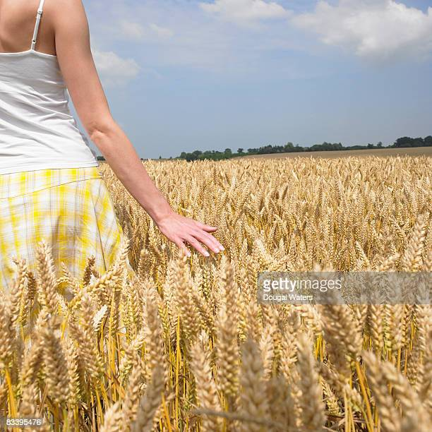 Young woman standing in wheat field.