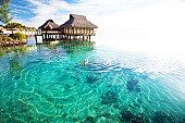 Young woman in white bikini swimming in a coral lagoon