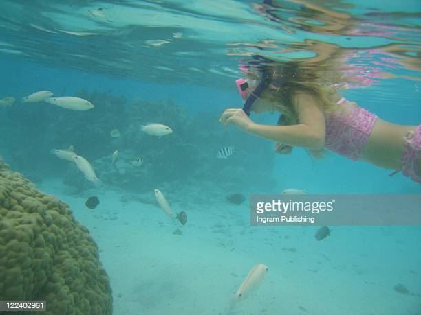 A young woman swimming underwater wearing scuba gear, Moorea, Tahiti, French Polynesia, South Pacific