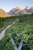 A young woman takes an early morning trail run in the Grand Teton National Park, Wyoming.
