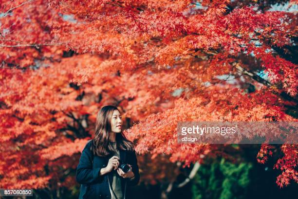 Young woman taking photos of beautiful Japanese red maple in Autumn