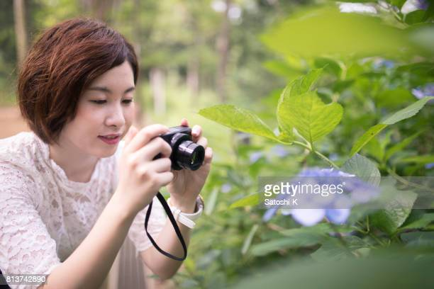 Young woman taking picture of hydrangea in forest