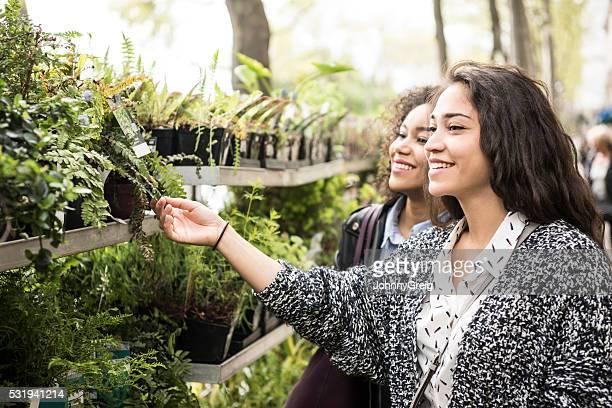 Jeune femme toucher ses plantes avec un ami