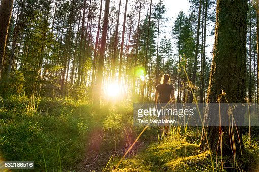 Young woman walking in forest path at sunset. Summer night in nature at dawn. Carefree lifestyle. Sun shining. Girl hiking in the woods. : Foto de stock