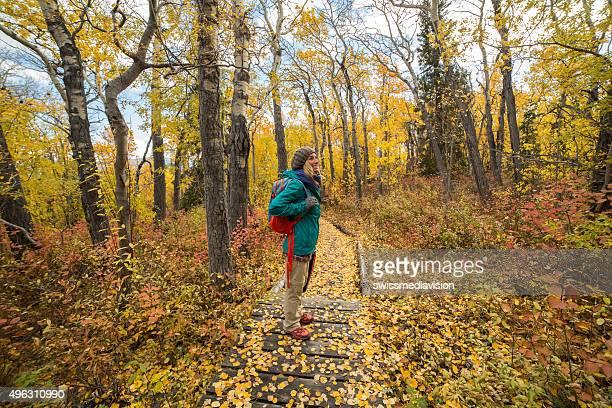Junge Frau zu Fuß in Gelb Wald im Herbst