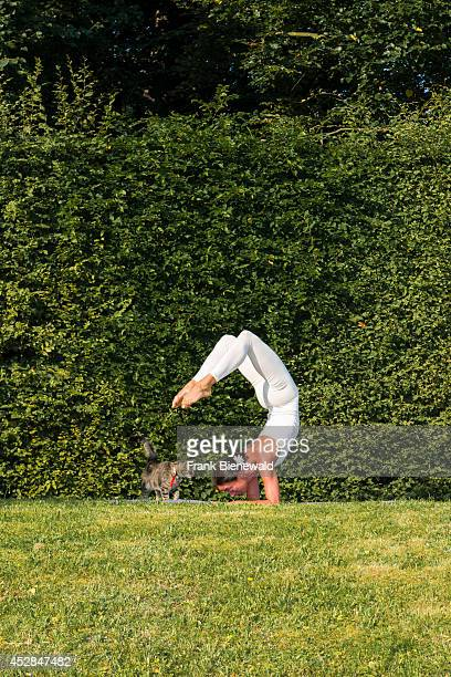Young woman wearing a white body suit is practising HathaYoga outdoor between trees showing the pose vrischikasana scorpion pose A cat is looking at...