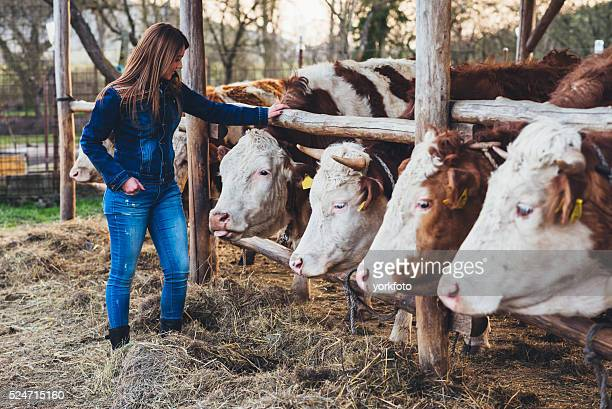Young woman with Cattles in the Farm