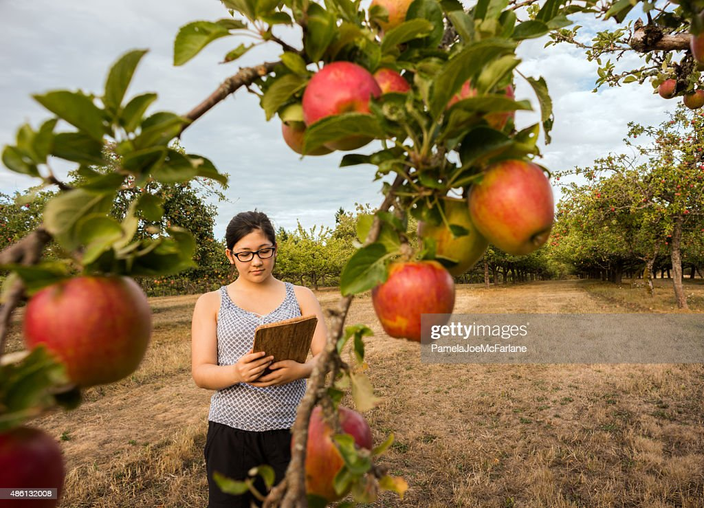 Young Woman with Computer Tablet Examining Apple Trees in Orchard