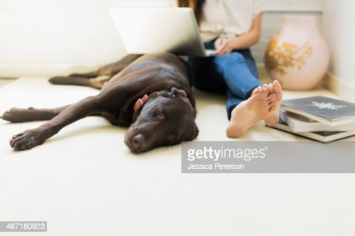 Young woman with labrador : Stock Photo