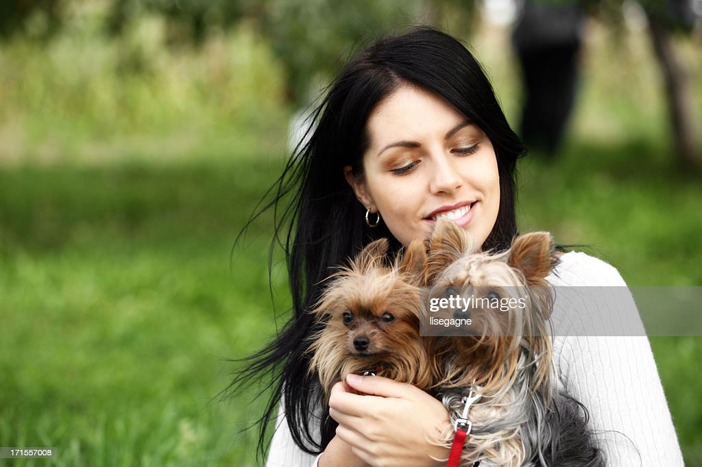 young woman with yorkshire terriers : Stock Photo