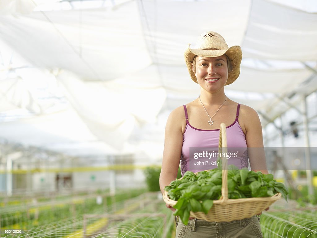 Young woman working at organic farm : Stock Photo