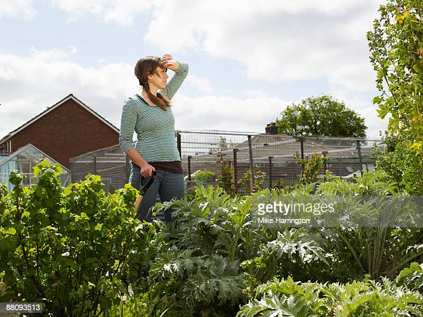 Young woman working in allotment