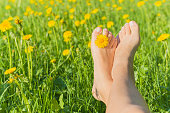 Young woman's barefoot relaxing on the green grass with yellow dandelion between toes in sunny spring day. Restful moment. Healthy lifestyle. Fresh, blooming flowers in meadow.