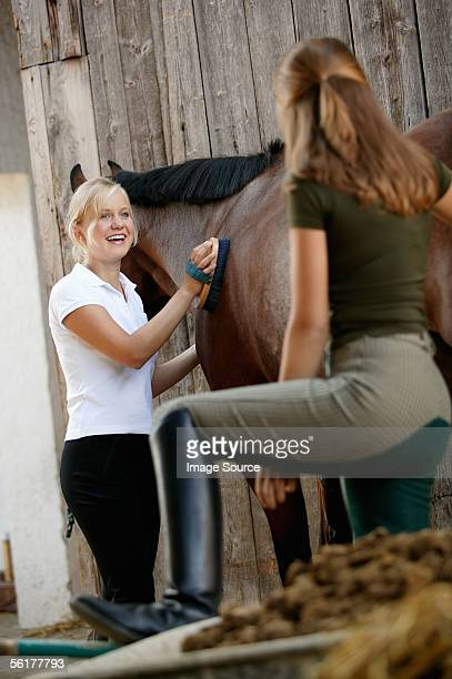 Young women grooming horse