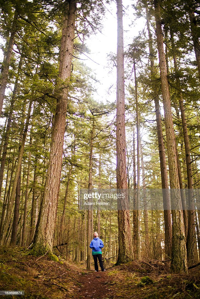 A young women hiking in the woods alone.