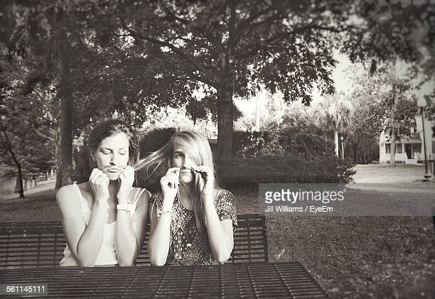 Young Women Holding Hair To Imitate Moustache In Park