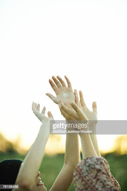 Young women reaching for dandelion seed head floating in air