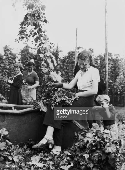 hop picking in kent essay The family would be paid at the end of the hop-picking season but could take an   read this extract from 'the collected essays, journalism and letters of.