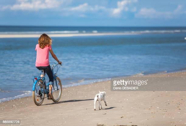 Young women with her dog riding a bike on the beach, Pas de Calais, Bitch.