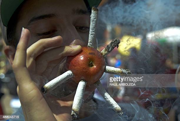 A youngster smokes marijuana joints on a apple during the World Day for the Legalization of Marijuana in Medellin Antioquia department Colombia on...